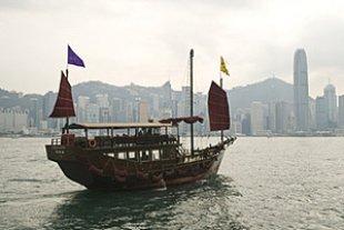 Hongkong Drachenboot panther Niko Summerer