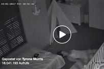 Babycam-Teaser