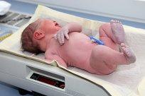 Geburtsgewicht Baby Fakten