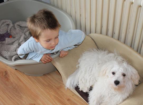 Hund Monty