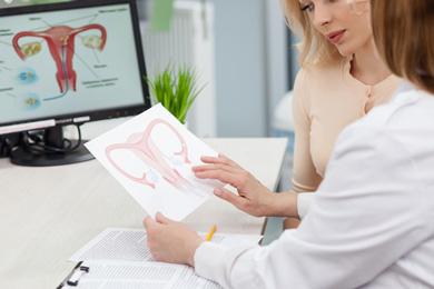 Gebärmutter Transplantation