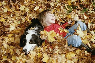 Kind Hund Herbstlaub