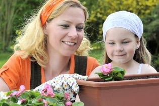 Gartenpflege Mieter Pflichten