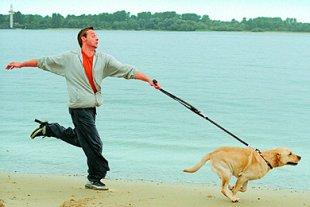 Spaziergang Hund Vorsätze