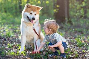 Kleiner Junge mit großem Hund