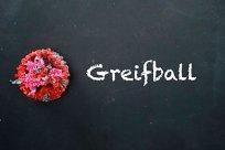 1000 Sachen Greifball