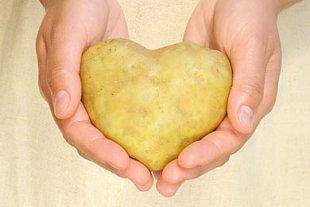 Kartoffel Herz krumm