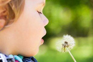 Kind Allergie vorbeugen