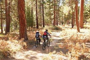 Herbst-Fahrrad