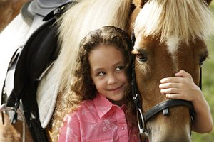 Pferd-Teaser