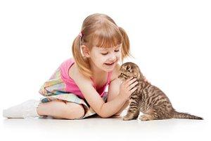 Kind wünscht sich Haustier