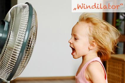 Macht viel Wind, so ein Ventilator.