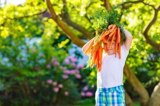 Iss schön dein Gemüse, damit du groß und stark wirst