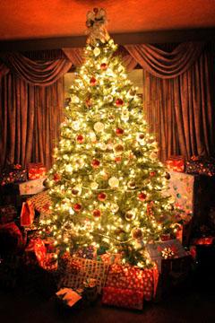 Krippe, Tannenbaum und Adventskranz