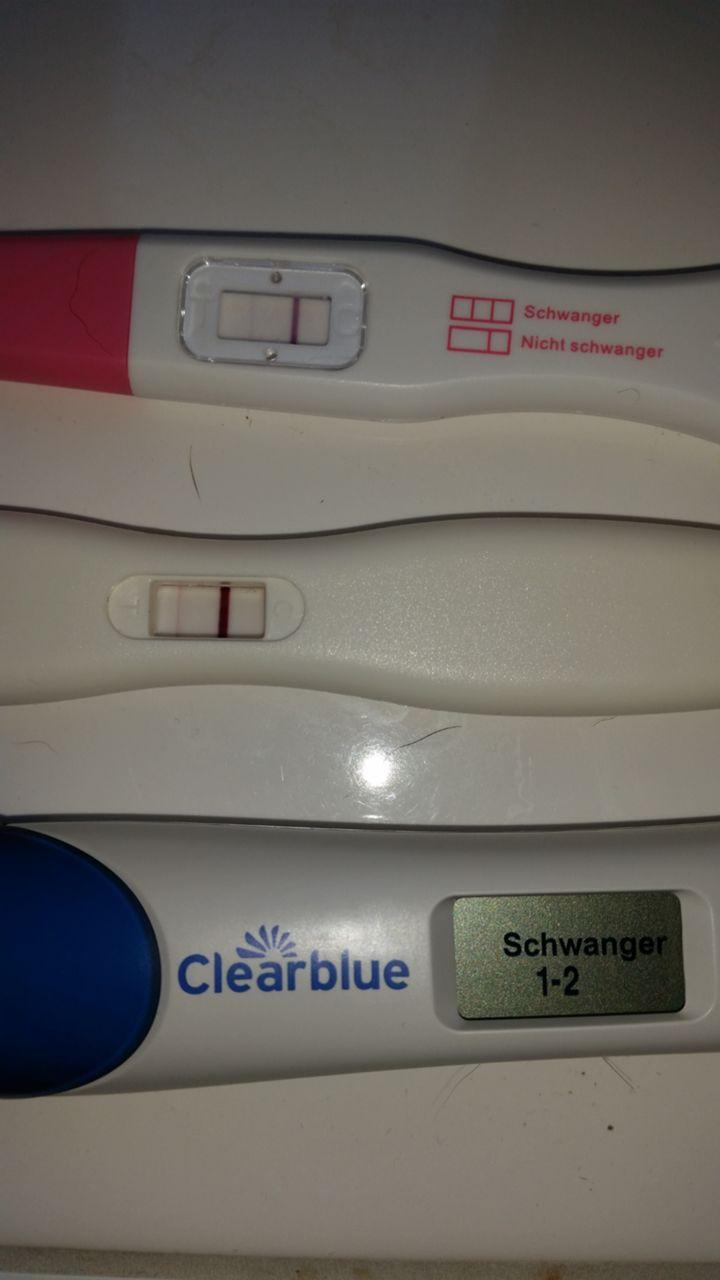 forum gewichtsverlust wegen schwangerschaft